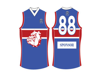 Hockey Singlets for Team